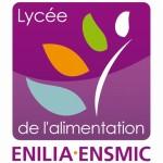 Site ENILIA Surgères