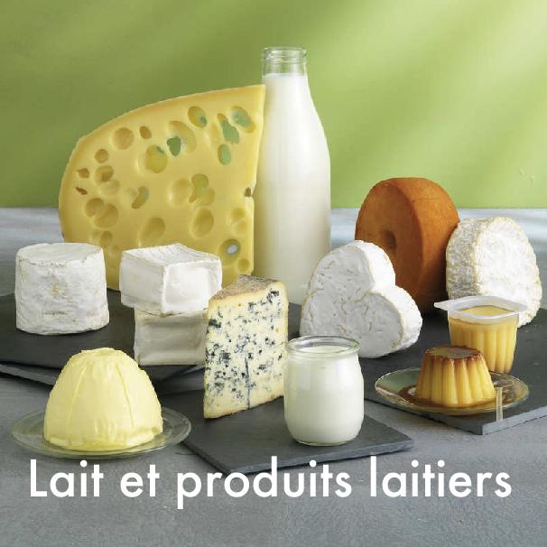 stage laits et produits laitiers