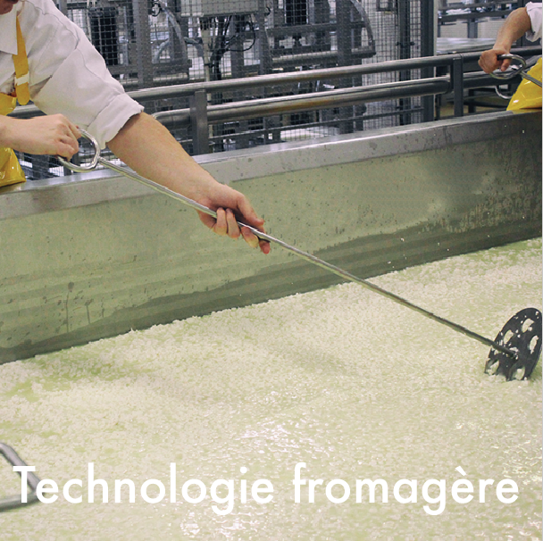 stage technologie fromagère